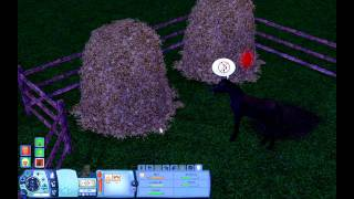 Deluxe Magazine The Sims 3 gameplay - 4.část