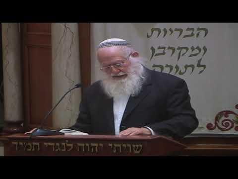 יום ירושלים שמח | הרב דב ביגון