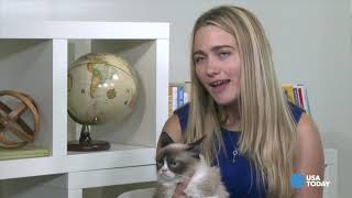 Remember the Time We Hung with Grumpy Cat? Take a Look