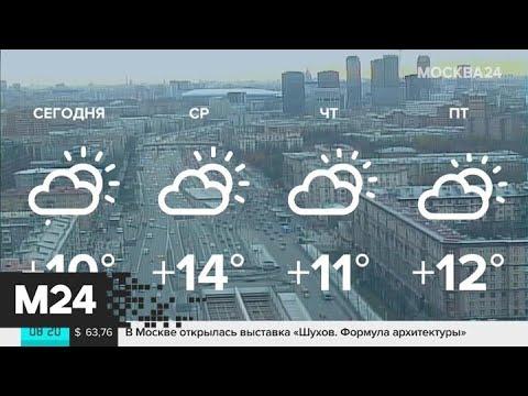 """""""Утро"""": погода в Москве соответствует майской - Москва 24"""