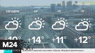 """Смотреть видео """"Утро"""": погода в Москве соответствует майской - Москва 24 онлайн"""