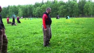 Защитная служба. Flying Rottweiler Perry vom Rangau (Летающий ротвейлер Пэрри)