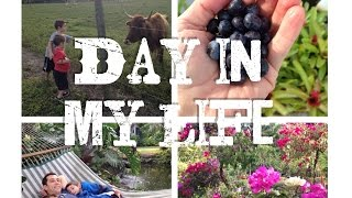 Day In My Life || The Perfect Sunday Dream Yard