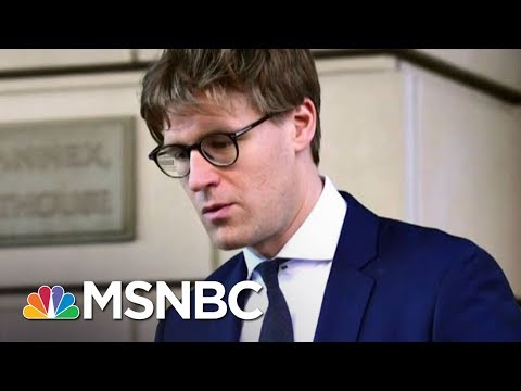 Americans Google Alex Van Der Zwaan As Robert Mueller Issues New Charges | Rachel Maddow | MSNBC