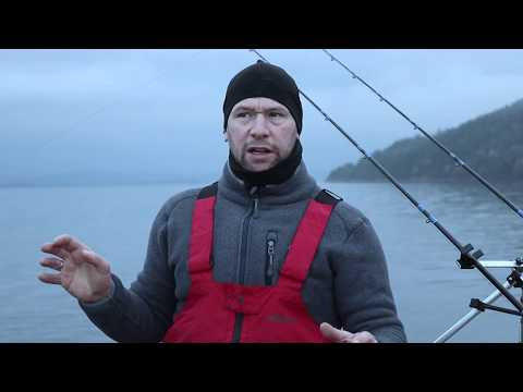 Shore Fishing In Norway For Plaice
