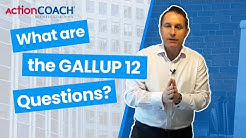 The Gallup 12 Questions