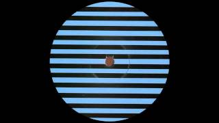 Brame & Hamo - Street Urchin (Glenn Astro & Imyrmind Remix) |Dirt Crew Recordings|