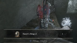 Dark Souls III - Painting Guardian Set + Havel's Ring+2 (LOCATION, NG+2)