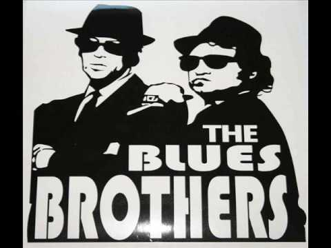 Blues Brothers & Ray Charles - 'Shake A Tailfeather'