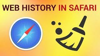How to delete Browsing History on Safari