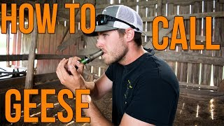 How To Call Geese | Waterfowl Wednesday