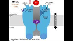 Ketamine, Glutamate, and the Future of Mood Disorders Therapeutics