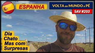 SAV #203   SEM TOMADINHA, SEM VÍDEO   Espanha (Vega de Ruiponce x Castrogonzalo)