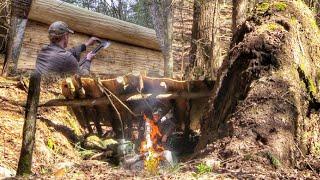 Building All Natural Waterproof Bark Roof Bushcraft Shelter w/ Bark Lashings Survival Skills #Shorts