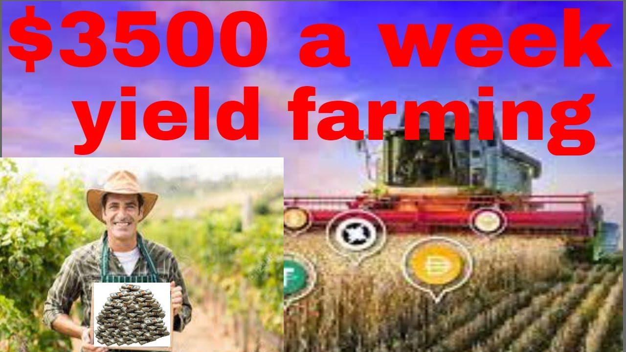 ,500 a week YIELD FARMING CRYPTO