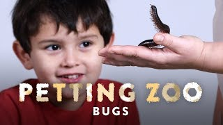 Bugs | HiHo Petting Zoo | HiHo Kids