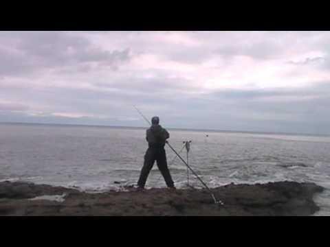 Shore Fishing In Arbroath