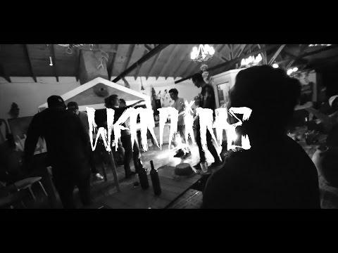 Видео Winline 47 com