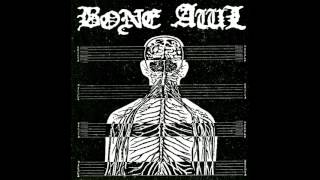 Bone Awl - night