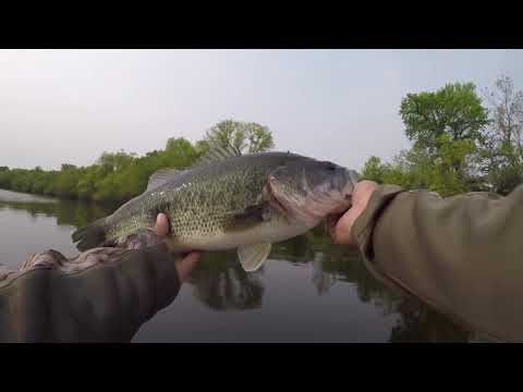 MN Bass Fishing At A NEW LAKE
