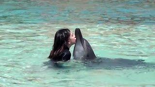 Atlantis the Palm Dubai - Dolphin Bay