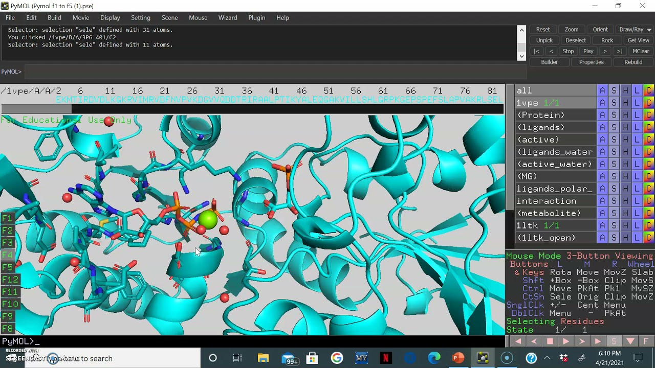 Using Molecular Visualization Software, Pymol, to understand metabolic enzymes: Phosphoglycerate...