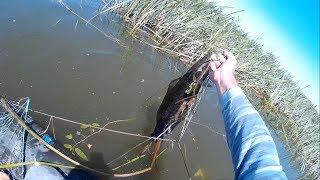 Рыбалка которую я запомню на всю жизнь