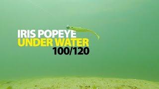 20cm oder 23cm REDHEAD von SPRO Spro Iris POP-EYE 14cm 17cm