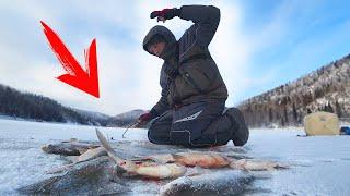 НЕ ЛЕЗЕТ В ЛУНКУ РЕАЛЬНЫЕ КОНИ Рыбалка с Барбосом ч 2