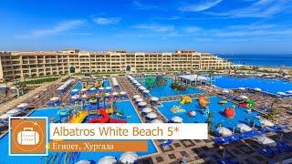 Обзор отеля Albatros White Beach 5 в Хургаде Египет от менеджера Discount Travel
