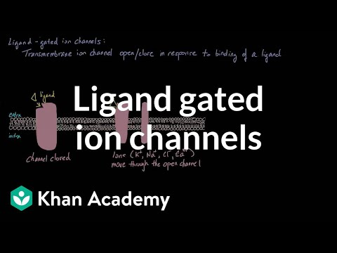 Ligand Gated Ion Channels | Nervous system physiology | NCLEX-RN | Khan Academy