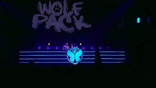 Wolfpack   Tomorrowland Belgium 2018