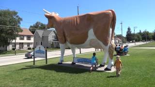 THE BIGGEST COW IN THE WORLD!!
