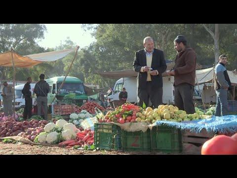 Le Maroc Vert : L'agriculture Familiale Au Coeur Du Développement