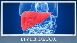 8 Steps on How to Cleanse and Detox Your Liver