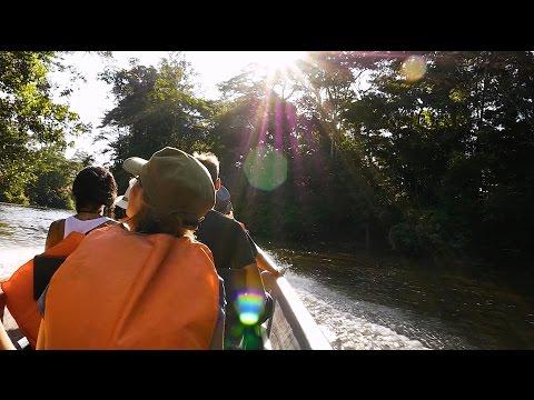 A Boat Ride Down the Amazon in Ecuador - Travel Video