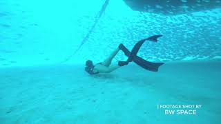Tonga Underwater Footage Shot By BW Space Underwater Drone