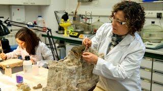 La UdL restaura restes arqueològiques de l'antic call jueu de Lleida