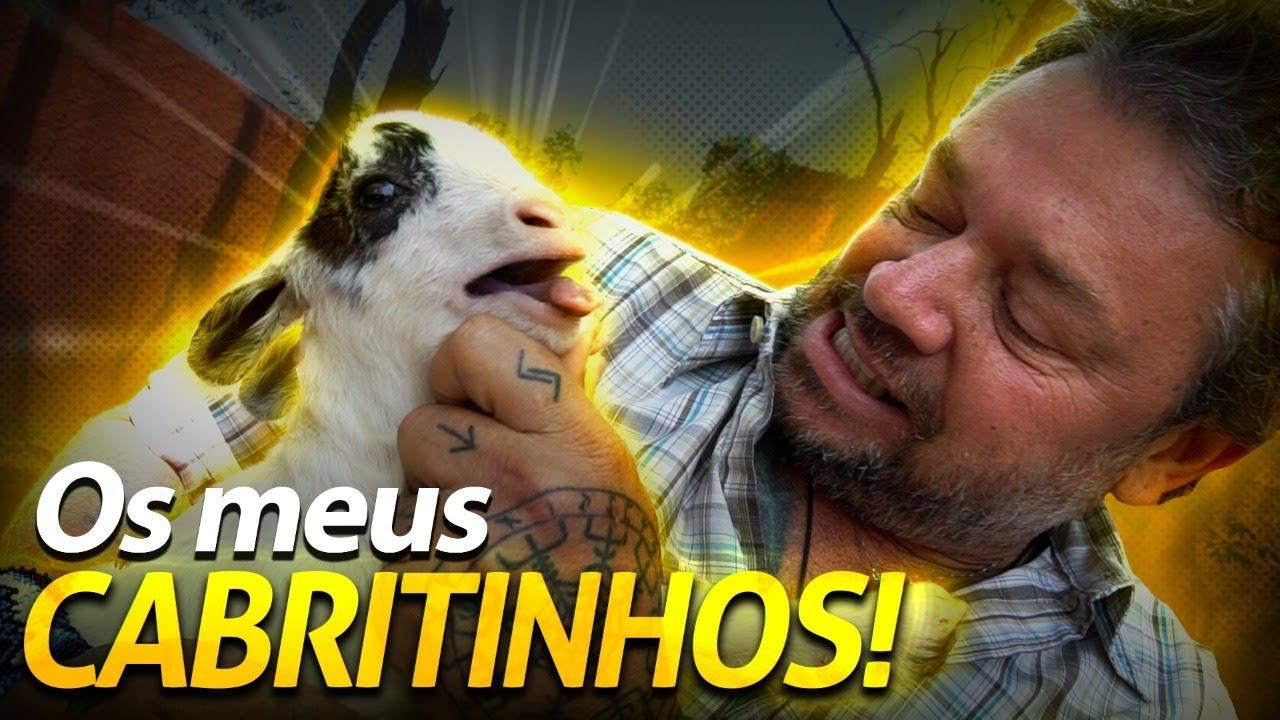 VISITANDO MINHAS MINI-CABRAS!   A CASA DOS BICHOS