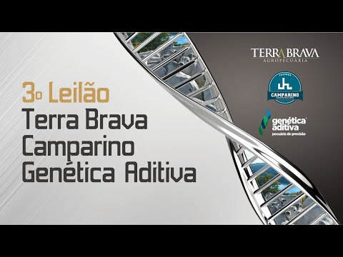 3º LEILÃO TERRA BRAVA, CAMPARINO E GENÉTICA ADITIVA - EXPOZEBU 2021