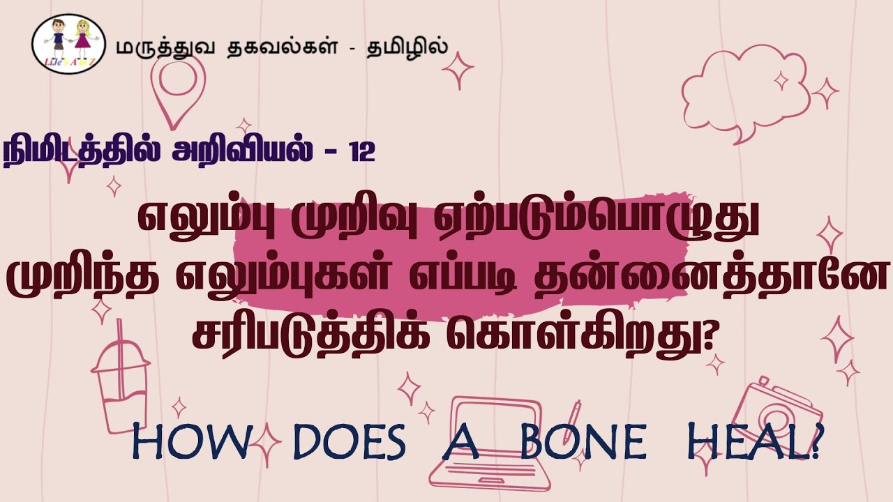 முறிந்த எலும்புகள் எப்படி தன்னைத்தானே சரிபடுத்திக் கொள்கிறது? How does a bone heal #fracture #health