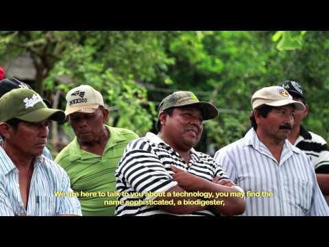 Programa de biogás en Yucatán con Fundación Kellogg