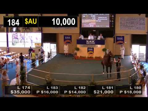 2014 Adelaide Yearling Sale Book 1 Day 2