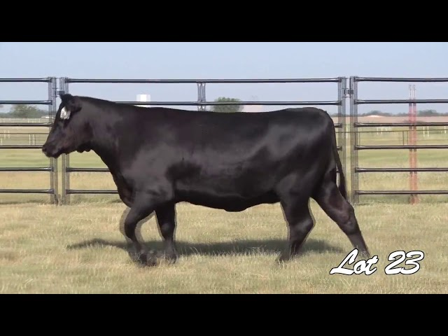 Pollard Farms Lot 23