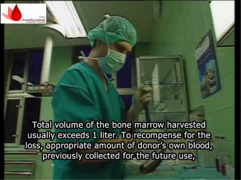 Bone marrow transplantation, donation procedure (HD, ENG subtitles)