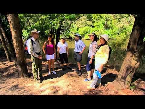 Sydney Weekender visits Lane Cove National Park