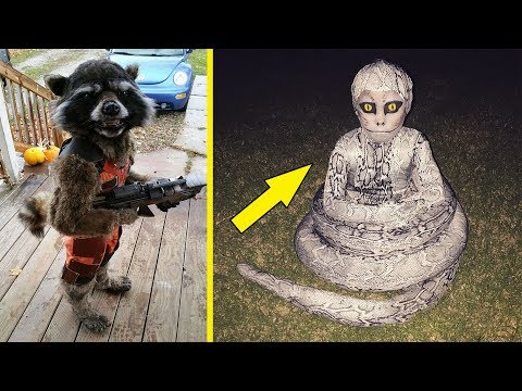 The Most Creative Halloween Costumes Ideas Ever