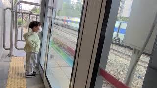 아이참, 지하철은 왜 안오는 거야? _ 열차덕후아기 솝…