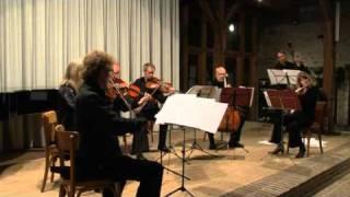 Ensemble van Beethoven Bonn spielt L.v.Beethoven Sinfonie Nr.4 B-Dur op.60 - Allegro ma non troppo