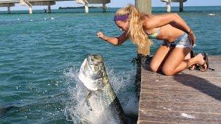 Hand Feeding Giant Tarpon in the Florida Keys